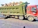 又一批超载大货车被实名曝光!