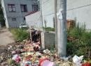 东海桃林北芹垃圾扔田间地头没有人管