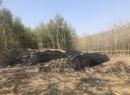 在阿湖水库北岸,属东海县洪庄镇地界.露天垃圾场