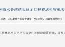 桃林原水务站站长被解除留置措施,移送检察机关起诉