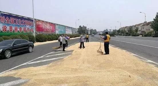 """东海村民把公路当晒粮场地,执法人员""""抄家伙""""就来了!"""