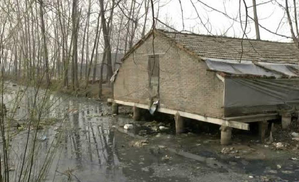 驼峰某村污染被曝光!整条河都是...