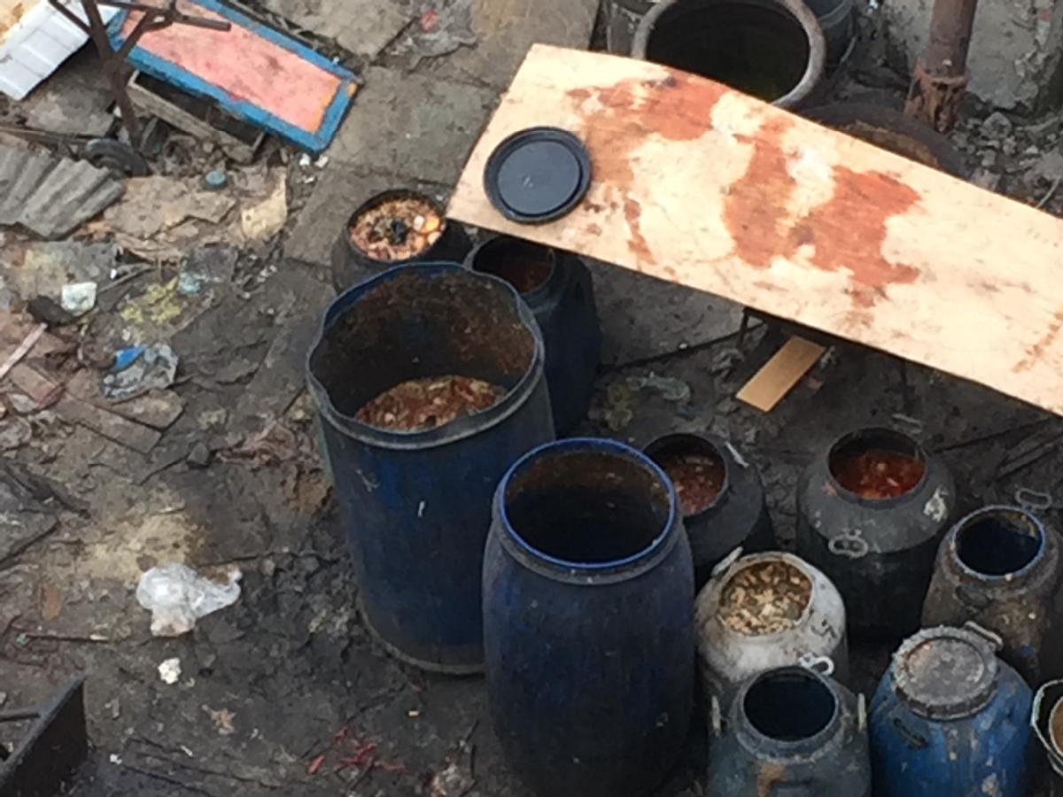 东海县城内西蔡村民在村内养猪,气味难闻,希望有关部门能管管。