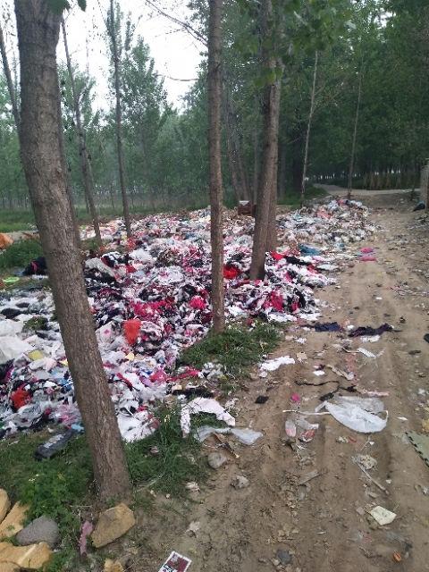 东海县青湖镇西丁旺村小学校附近全是垃圾