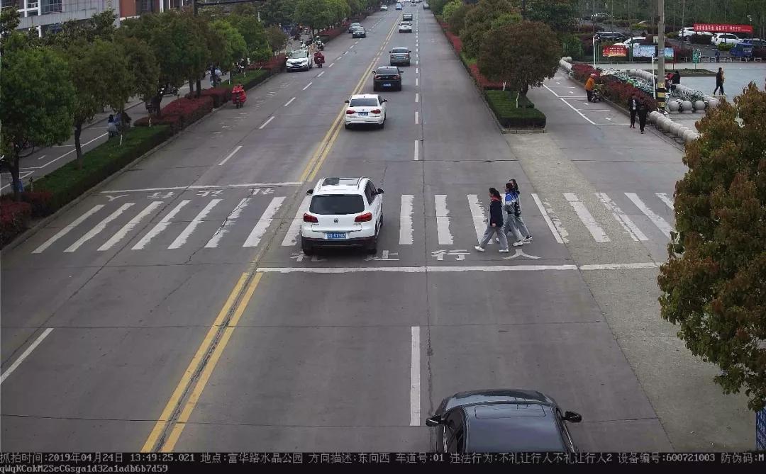 经常走富华路的司机注意,这里有礼让行人抓拍!一批机动车未礼让行人被曝光!