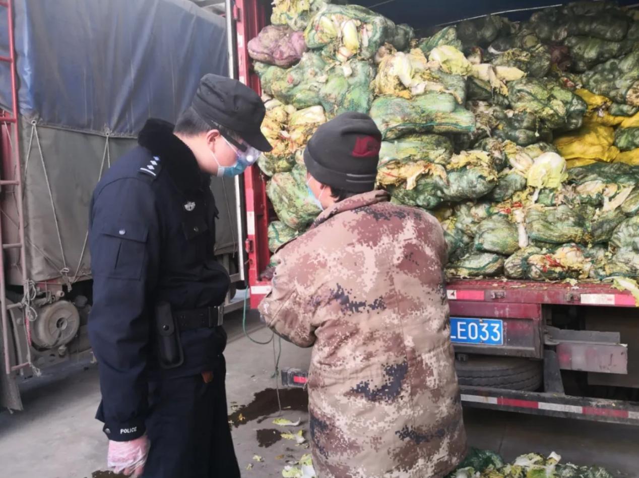 缺德!东海一商户微信上从河南买了16000斤大白菜,结果收到全是烂的!