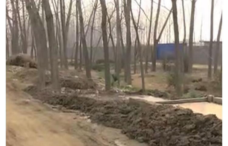 东海温泉这个村的河道污染严重,都上电视台了!快看看